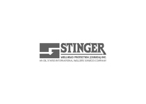 Stinger-Well-head-Protection